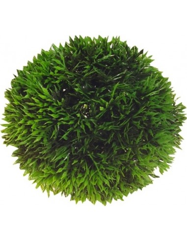 Hobby Aqua Plant Ball 18cm
